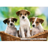 Jigsaw puzzle 60 pcs - Puppies in the Basket (by Castorland)