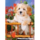 Jigsaw puzzle 60 pcs - Puppy in Cart (by Castorland)