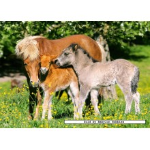 Jigsaw puzzle 120 pcs - Ponies in the Meadow (by Castorland)