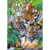 1000 pcs - Tiger Family (by Ravensburger)
