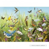 Jigsaw puzzle 1000 pcs - Feathered Friends 1 - Greg and Company LLC (by Gibsons)