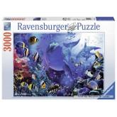 Jigsaw puzzle 3000 pcs - Beautiful Underwater World (by Ravensburger)