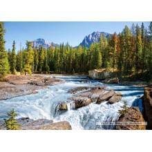 Jigsaw puzzle 1500 pcs - Athabasca River, Jasper National Park (by Castorland)