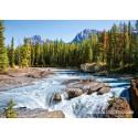 1500 pcs - Athabasca River, Jasper National Park (by Castorland)