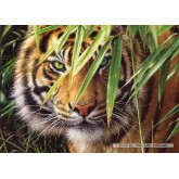 Jigsaw puzzle 1500 pcs - Emerald Forest (by Castorland)