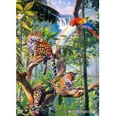 Jigsaw puzzle 1000 pcs - Relax in the Jungle (by Castorland)