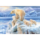 Jigsaw puzzle 1000 pcs - Arctic kingdom (by Castorland)