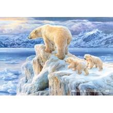 Jigsaw puzzle 1000 pcs - Arctic kingdom (by Castorland)