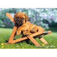Jigsaw puzzle 260 pcs - Puppy on Deckchair (by Castorland)