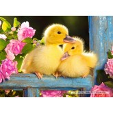 Jigsaw puzzle 120 pcs - Two Ducklings (by Castorland)