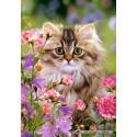 1500 pcs - Furry softness (by Castorland)