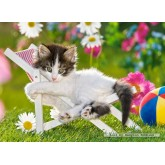 Jigsaw puzzle 120 pcs - Afternoon siesta (by Castorland)