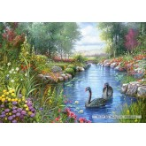 Jigsaw puzzle 1500 pcs - Black Swans, Andres Orpinas (by Castorland)