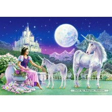 Jigsaw puzzle 500 pcs - Unicorn Princess (by Castorland)