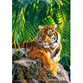 Jigsaw puzzle 500 pcs - Sumatran tigress (by Castorland)