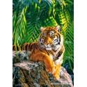 500 pcs - Sumatran tigress (by Castorland)