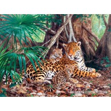 Jigsaw puzzle 3000 pcs - Jaguars in the jungle (by Castorland)