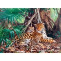 3000 pcs - Jaguars in the jungle (by Castorland)
