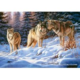 500 pcs - Wolves (by Castorland)