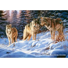 Jigsaw puzzle 500 pcs - Wolves (by Castorland)