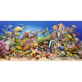 Jigsaw puzzle 4000 pcs - Underwater life (by Castorland)