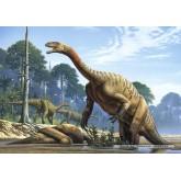 Jigsaw puzzle 500 pcs - Plateosaurus (by Castorland)