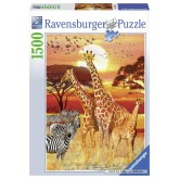 1500 pcs - Sunset in Africa (by Ravensburger)