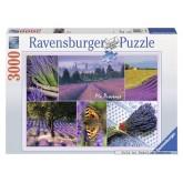 3000 pcs - The Provence (by Ravensburger)