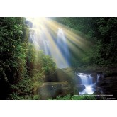 Jigsaw puzzle 1000 pcs - Waterfall  - Magic Forest (by Heye)