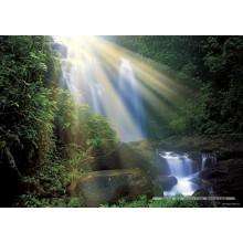 Jigsaw puzzle 1000 pcs - Waterfall  - Magic Forest (by Heye)