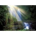 1000 pcs - Waterfall  - Magic Forest (by Heye)