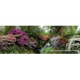 6000 pcs - Bodnant Garden - Alexander von Humboldt (by Heye)