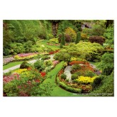 Jigsaw puzzle 1000 pcs - Butchart Gardens - Genuine (by Educa)
