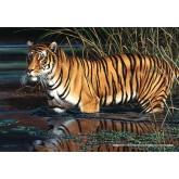 Jigsaw puzzle 1000 pcs - Tiger (by Schmidt)