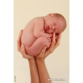 Jigsaw puzzle 500 pcs - Baby in hands - Anne Geddes (by Schmidt)
