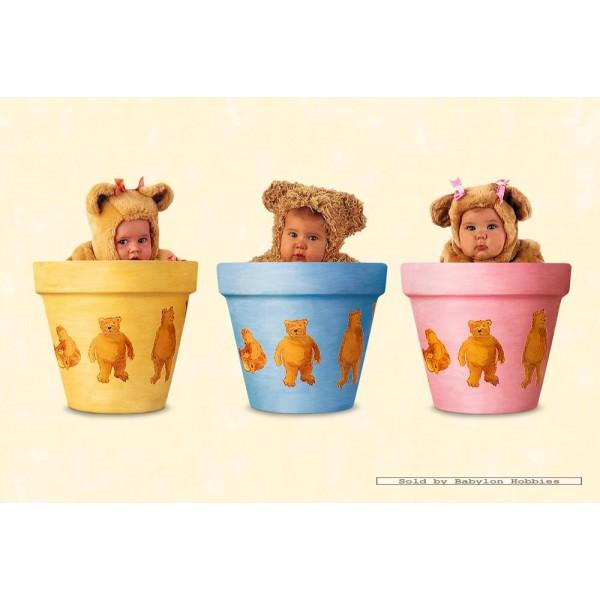 500 Pcs Baby Bears Pots Anne Geddes By Schmidt