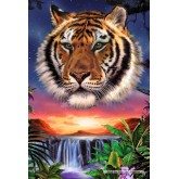 Jigsaw puzzle 500 pcs - The Night of the Tiger (by Schmidt)