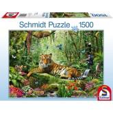 Jigsaw puzzle 1500 pcs - Jungle Tigers (by Schmidt)