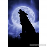 Jigsaw puzzle 500 pcs - Wolf in Full Moonlight - Julie Fain (by Schmidt)
