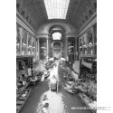 1000 pcs - Indoor Canal - Thomas Barbey (by Schmidt)