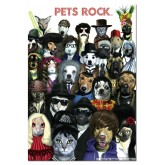 Jigsaw puzzle 1000 pcs - Pets rock - Genuine (by Educa)