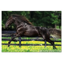 Jigsaw puzzle 500 pcs - Galloping - Genuine (by Educa)