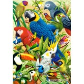Jigsaw puzzle 1000 pcs - Avian World (by Castorland)