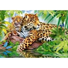 Jigsaw puzzle 500 pcs - Jaguars by the Pool (by Castorland)