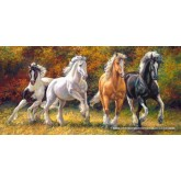 Jigsaw puzzle 4000 pcs - Born to Run (by Castorland)