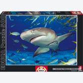 Jigsaw puzzle 500 pcs - Shark (by Educa)