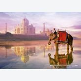Jigsaw puzzle 1000 pcs - Elephant at Taj Mahal (by Educa)