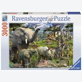 3000 pcs - Animals on the Search for Water (by Ravensburger)