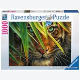 Jigsaw puzzle 1000 pcs - Mysterieus Tiger (by Ravensburger)