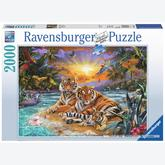 Jigsaw puzzle 2000 pcs - Tigers at Sunset (by Ravensburger)